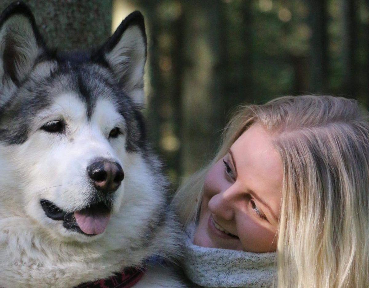 Mia fandt en brystknude hos sin hund, der heldigvis viste sig ikke at være kræft. Det er dog stadig en god idé, at man som hundeejer sætter sig ind, hvilke symptomer på kræft hos hunde, man bør være særligt opmærksom på. KLIK VIDERE OG SE DE TYPISKE KRÆFT-TEGN HOS HUNDE, SOM DU SKAL TAGE ALVORLIGT. Foto: @nordicmalamutes