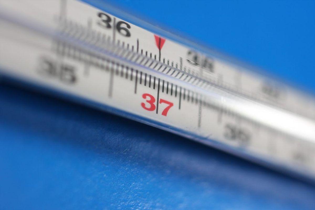 Temperaturen i køleskabet skal højst være +5 grader. Det er derfor en god idé med et termometer, så du kan holde øje med temperaturen. Kilde: Min Måltidshåndbog. Arkivfoto.