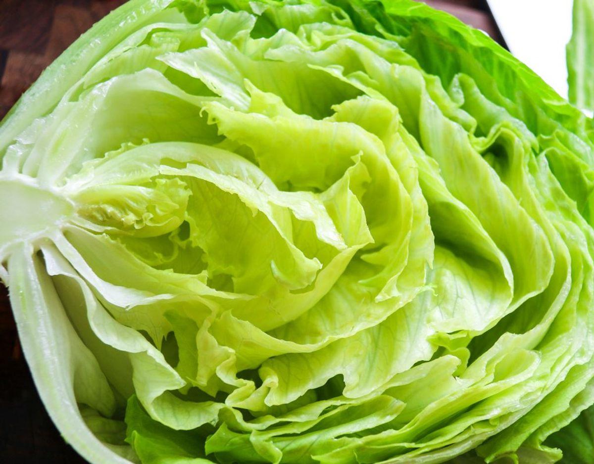 Det er vigtigt, at du skyller salat, inden du spiser det råt. Genrefoto.