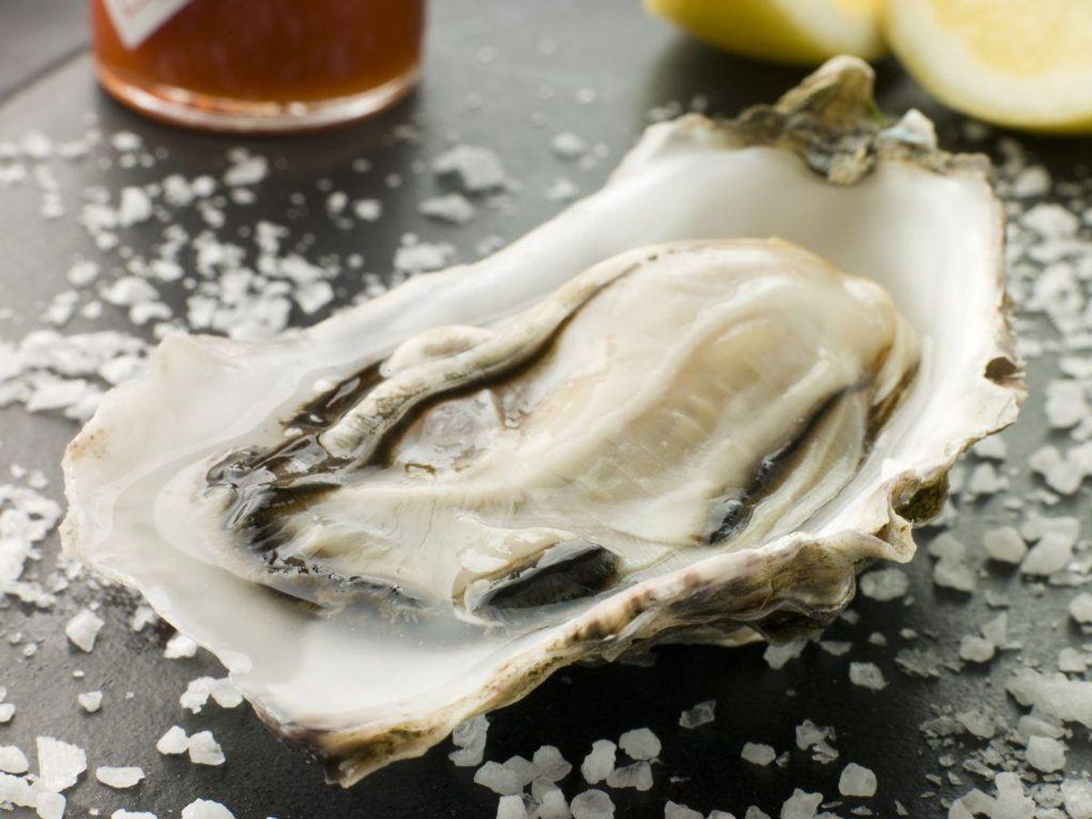 Rå østers er også en af de kendte smittekilder. Foto: Colourbox