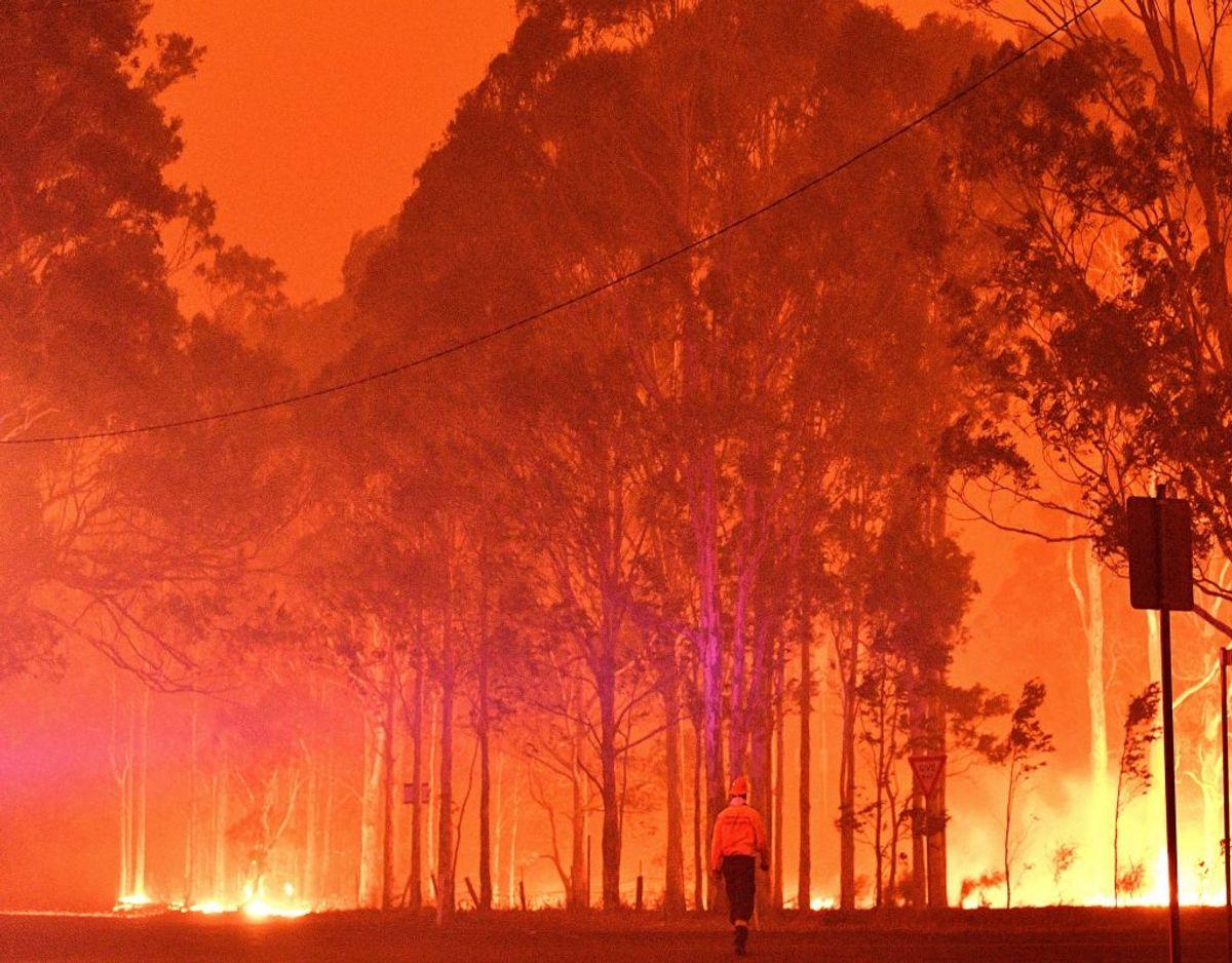 I byen Nowra i delstaten New South Wales har himlen farvet rødorange på grund af de ekstremt mange brande, som hærger. KLIK VIDERE OG SE FLERE BILLEDER. Foto: Saeed Khan/Ritzau Scanpix