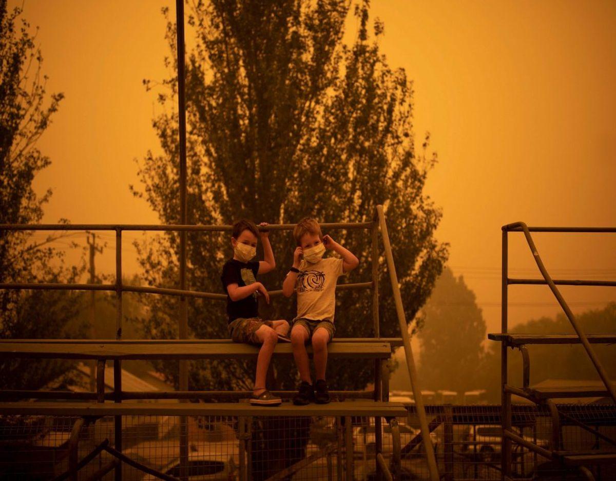 De seneste dage har ilden for alvor fået fat på delstaten New South Wales, hvor en række beboere og feriegæster er blevet evakueret fra – heriblandt to børn, der har masker på for at beskytte sig mod den røgfyldte luft, mens de leger i byen Bega. Foto: Sean Davey/Ritzau Scanpix
