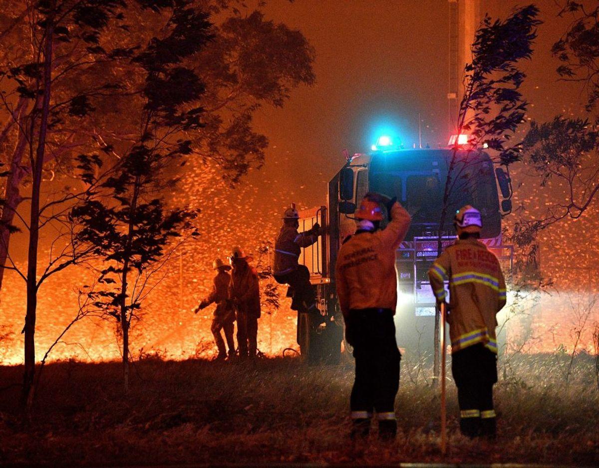 Frivillige brandmænd forsøger at stoppe ilden for at sprede sig yderligere ved blandt andet at spule den tørre beplantning nær brandene. Mange tusind brandmænd deltager i kampen mod flammerne, der har kostet indtil flere menneskeliv. Blandt andre mistede en 28-årig brandmand livet mandag, da en ildtornado i området Upper Murray øst for hovedstaden, Canberra, fik fat i den otte ton tunge brandbil, han kørte i, og kastede den om på taget. Foto: Saeed Khan/Ritzau Scanpix