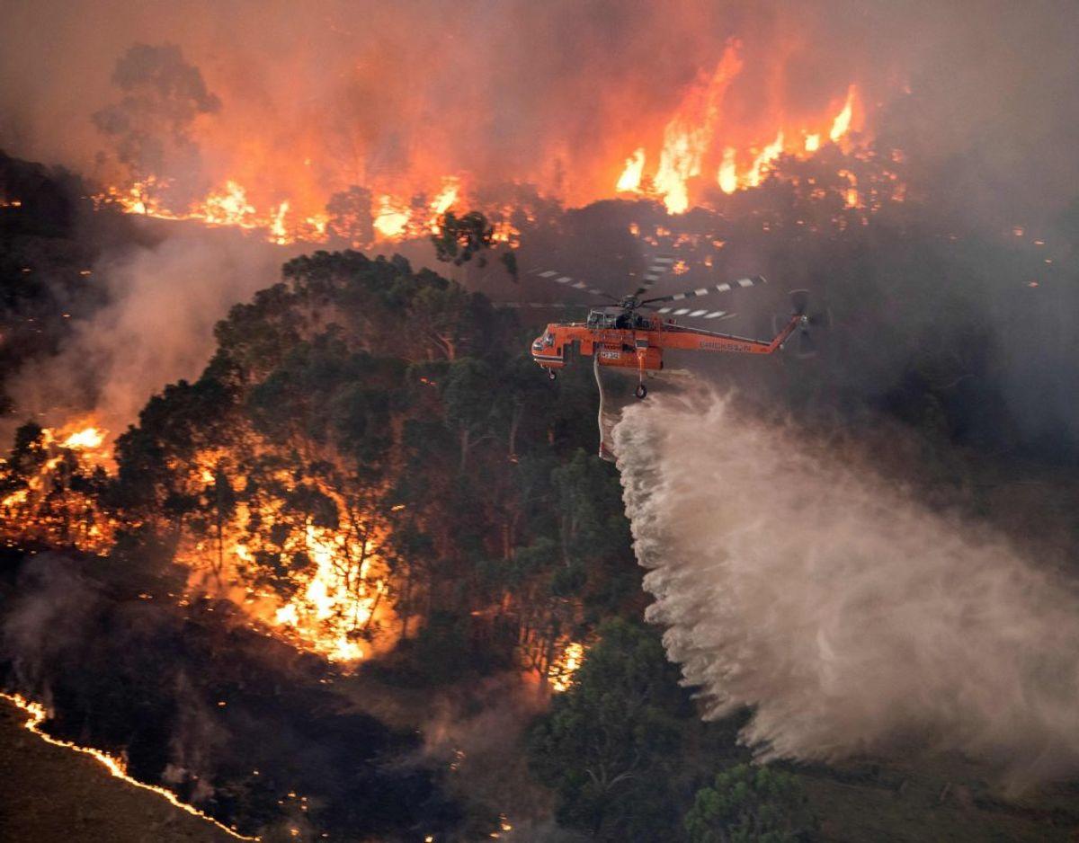 De mange naturbrande bliver bekæmpet både af brandmænd på jorden, men også fra luften. På trods af at der gennem flere uger er blevet hældt uanede mængder vand på flammerne, spreder ilden sig på grund af det meget varme, tørre vejr samt vinden. På billedet ses et område i regionen East Gippsland i delstaten Victoria, der er et yndet rejsemål for mange turister. Foto: Handout/Ritzau Scanpix