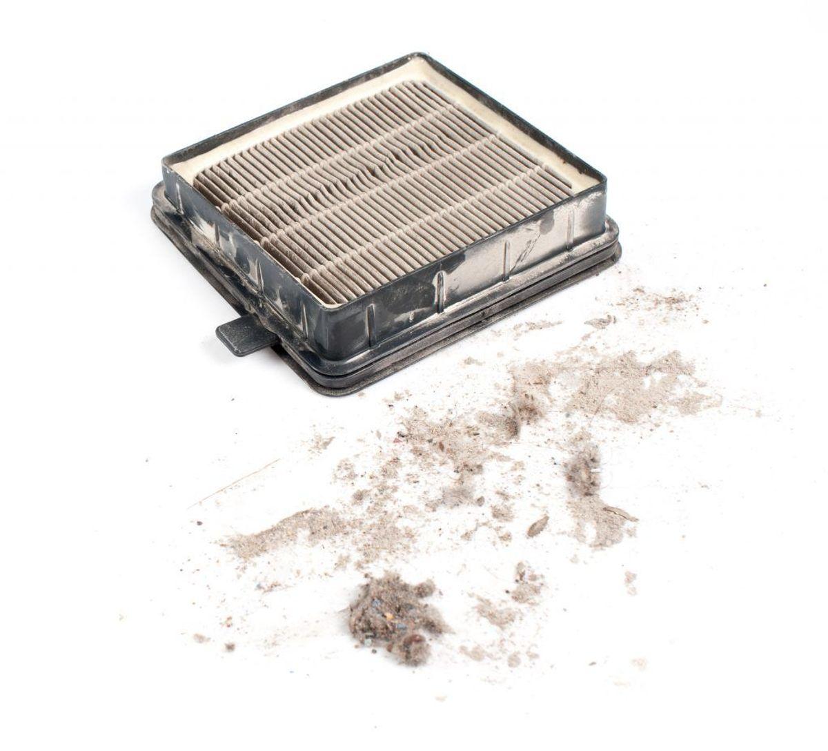 Det er ikke nok kun at fjerne fnug fra filteret på vaskemaskinen og tørretumbleren. Mindst en gang om året skal du have fat i en tandbørste og sæbevand og få gjort filteret ordentligt rent. Kilde: Reader's DIgest. Arkivfoto.