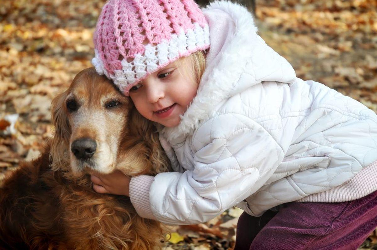 Der findes en række hunderacer, der er ideelle for familier med børn. KLIK VIDERE OG SE HVILKE HUNDERACER. Arkivfoto.
