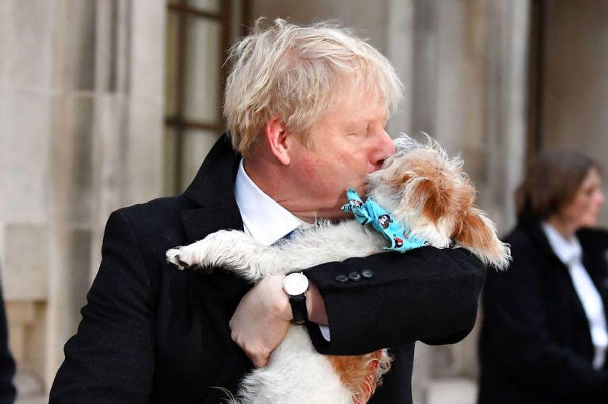 Boris Johnson tog sin hund Dilyn med til stemmeboksen. KLIK VIDERE OG SE FLERE BILLEDER AF DE MANGE HUNDE VED VALGSTEDERNE. Foto: Scanpix