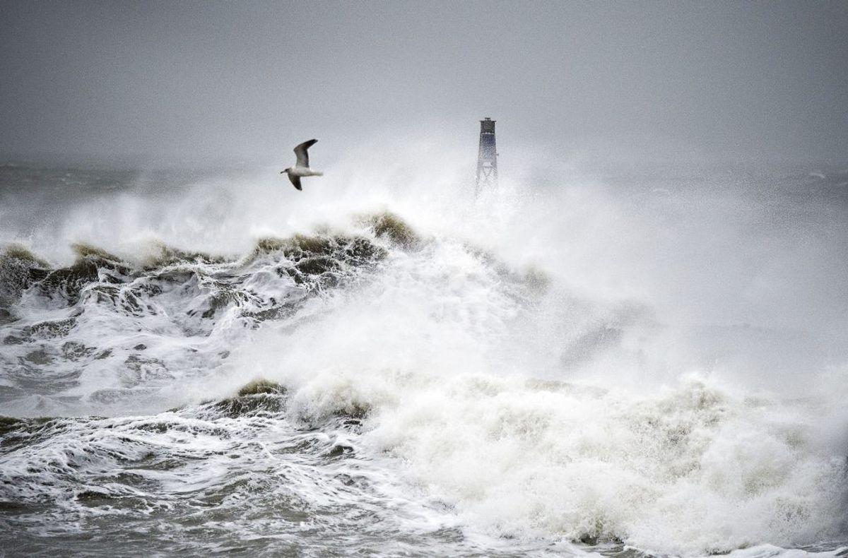 DMI advarer mod voldsomme vindstød. Helt op til stormstyrke. KLIK og se, hvor det rammer. Foto: Henning Bagger/Ritzau Scanpix.