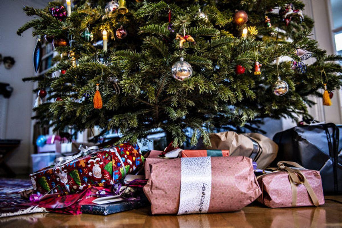 En række kunder er blevet så forargede over forsinket levering på deres juletræer i potte, at de har skrevet vrede anmeldelser af firmaet 100% Øko samt varslet snarlige politianmeldelser. Firmaets salgschef beklager sene leverancer, som skyldes, at 100% Øko måtte skifte lager for at have plads til alle juletræerne. (Arkivfoto). Foto: Henning Bagger/Scanpix