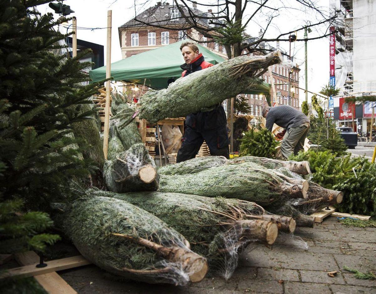 Julegaver og madspild bidrager til gengæld en hel del til den øgede CO2-udledning i julen. Foto: Scanpix