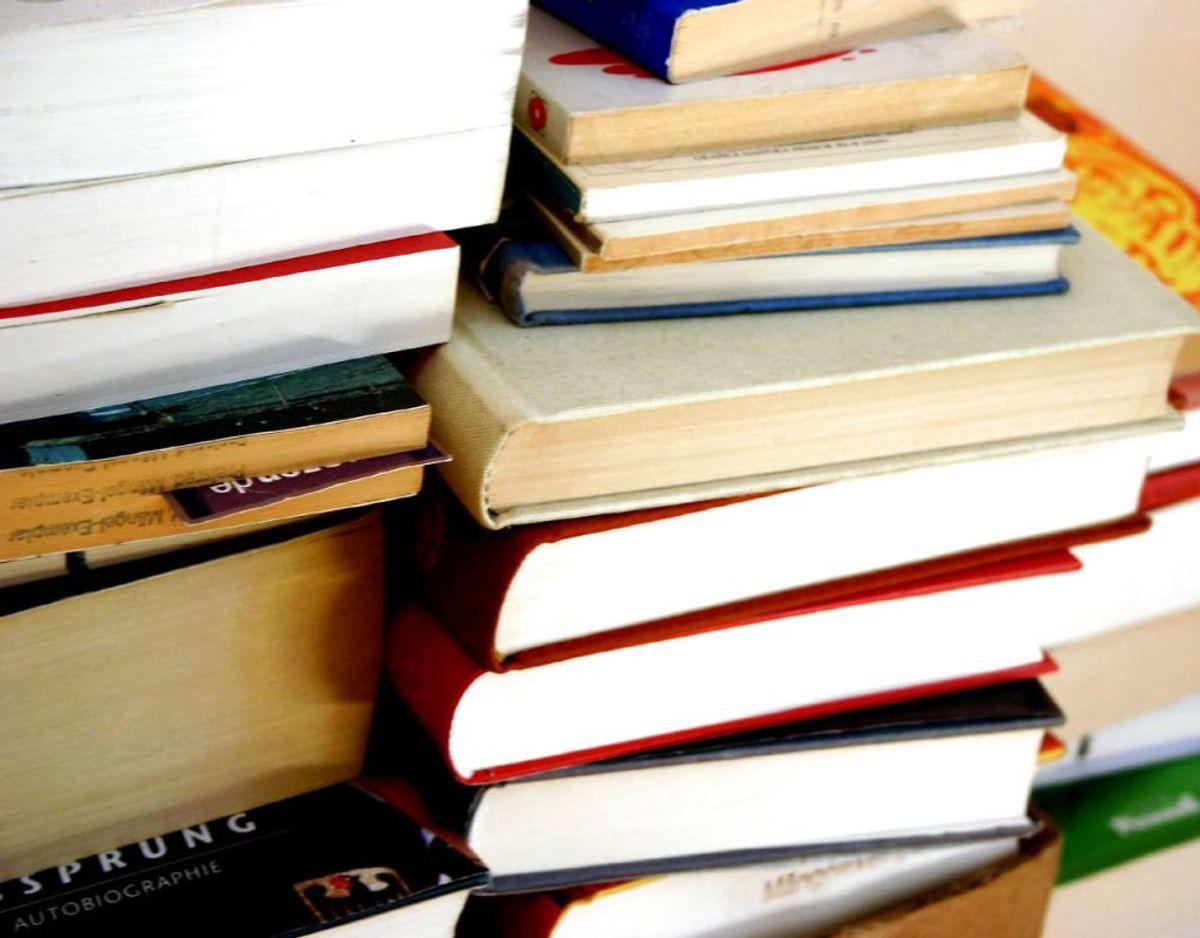 Slæb heller ikke bøgerne ned i kælderen, for de kan blive spist af sølvfisk, som lever fugtige steder som kældre. Foto: Scanpix