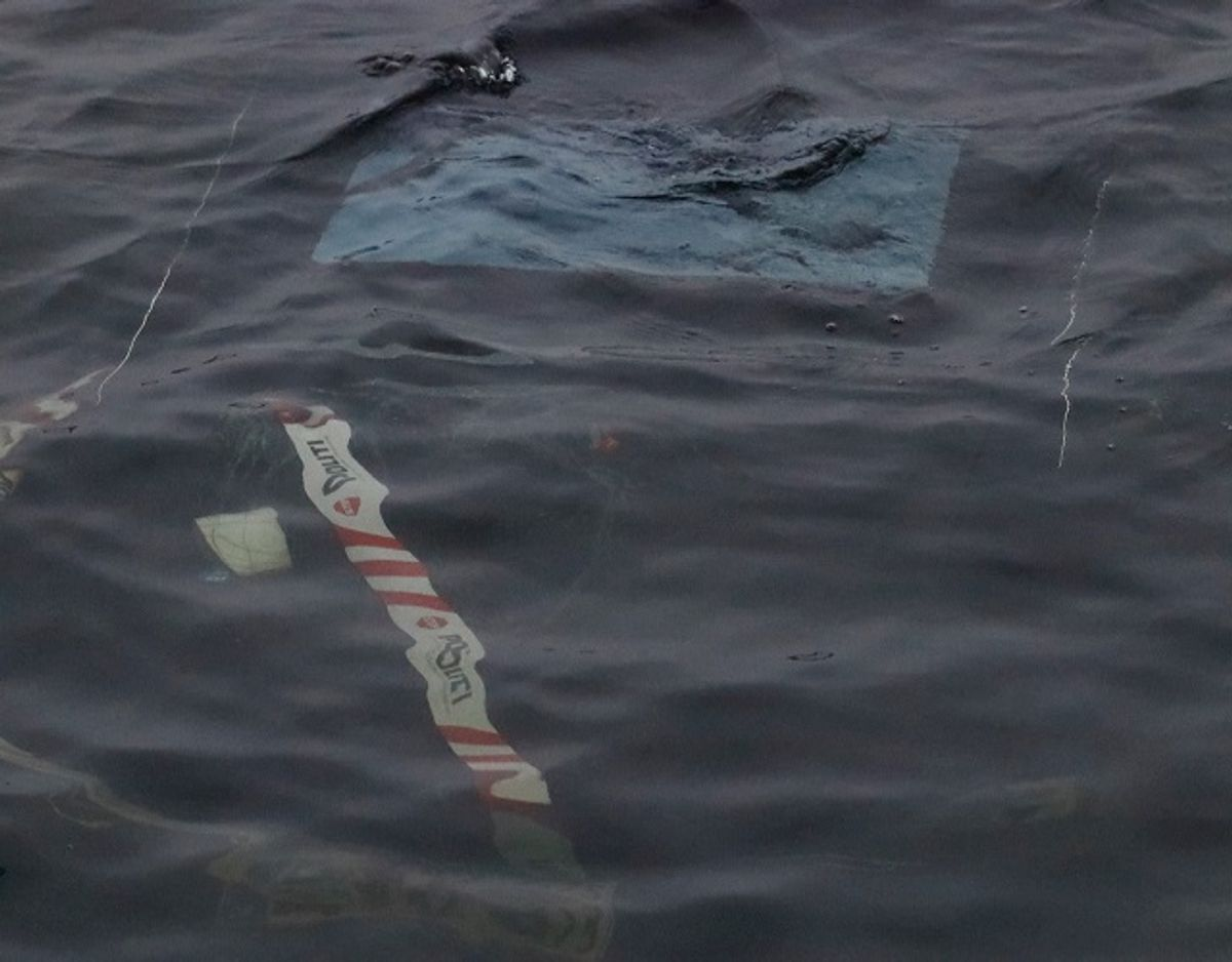 En borger har onsdag morgen fundet en bil i vandet ved Damhussøen. Politiet forklarer, at der er  tale om en brugsstjålet Tesla. KLIK VIDERE OG SE FLERE BILLEDER AF BILEN. Foto: Presse-fotos.dk