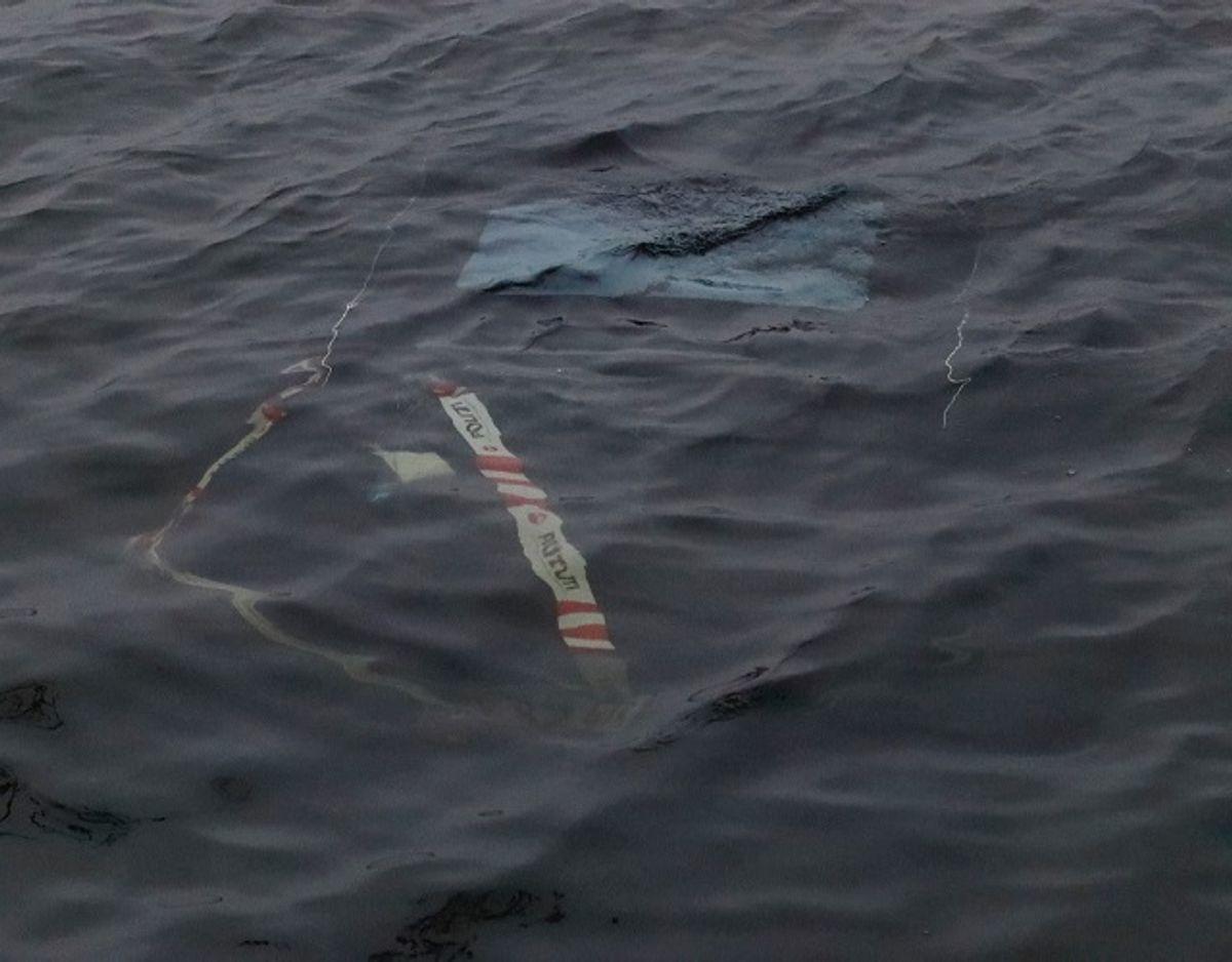 En borger har onsdag morgen fundet en bil i vandet ved Damhussøen. Politiet forklarer, at der er  tale om en brugsstjålet Tesla. Foto: Presse-fotos.dk
