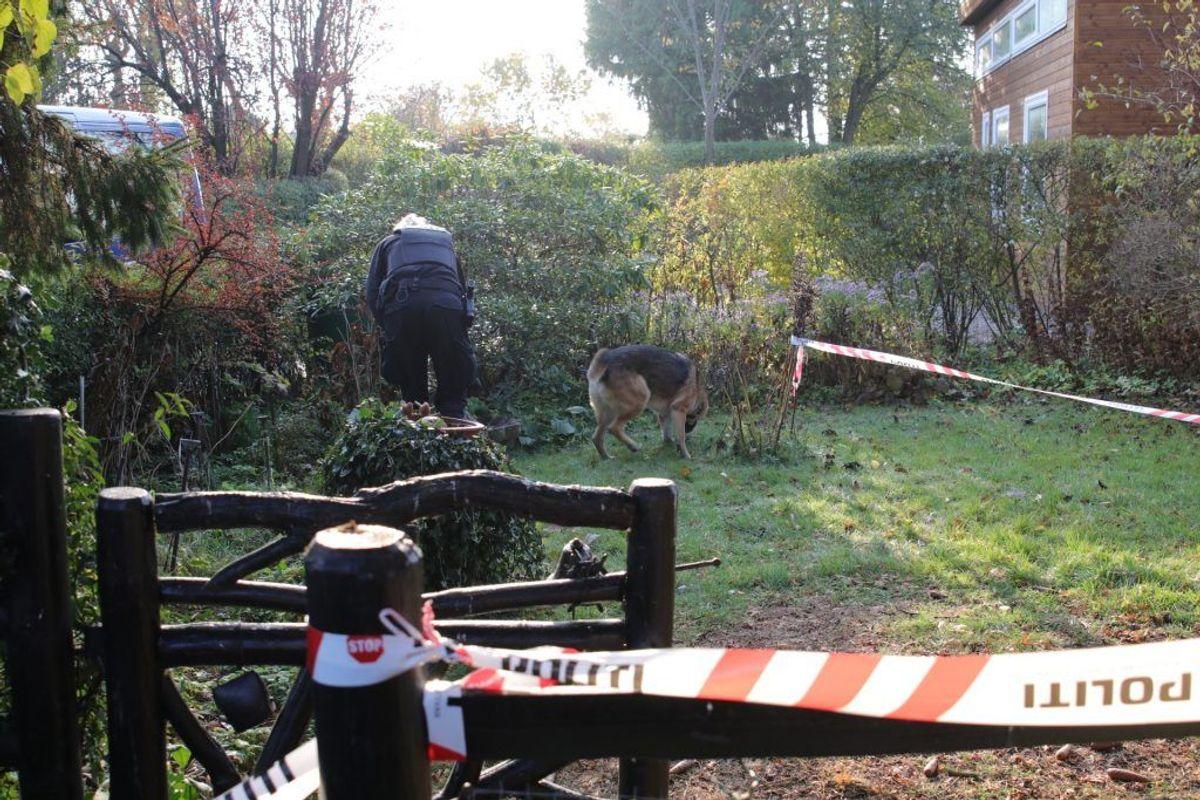 Der blev ledt efter ligdele i en kolonihave på Lenesvej. Foto: Presse-fotos.dk