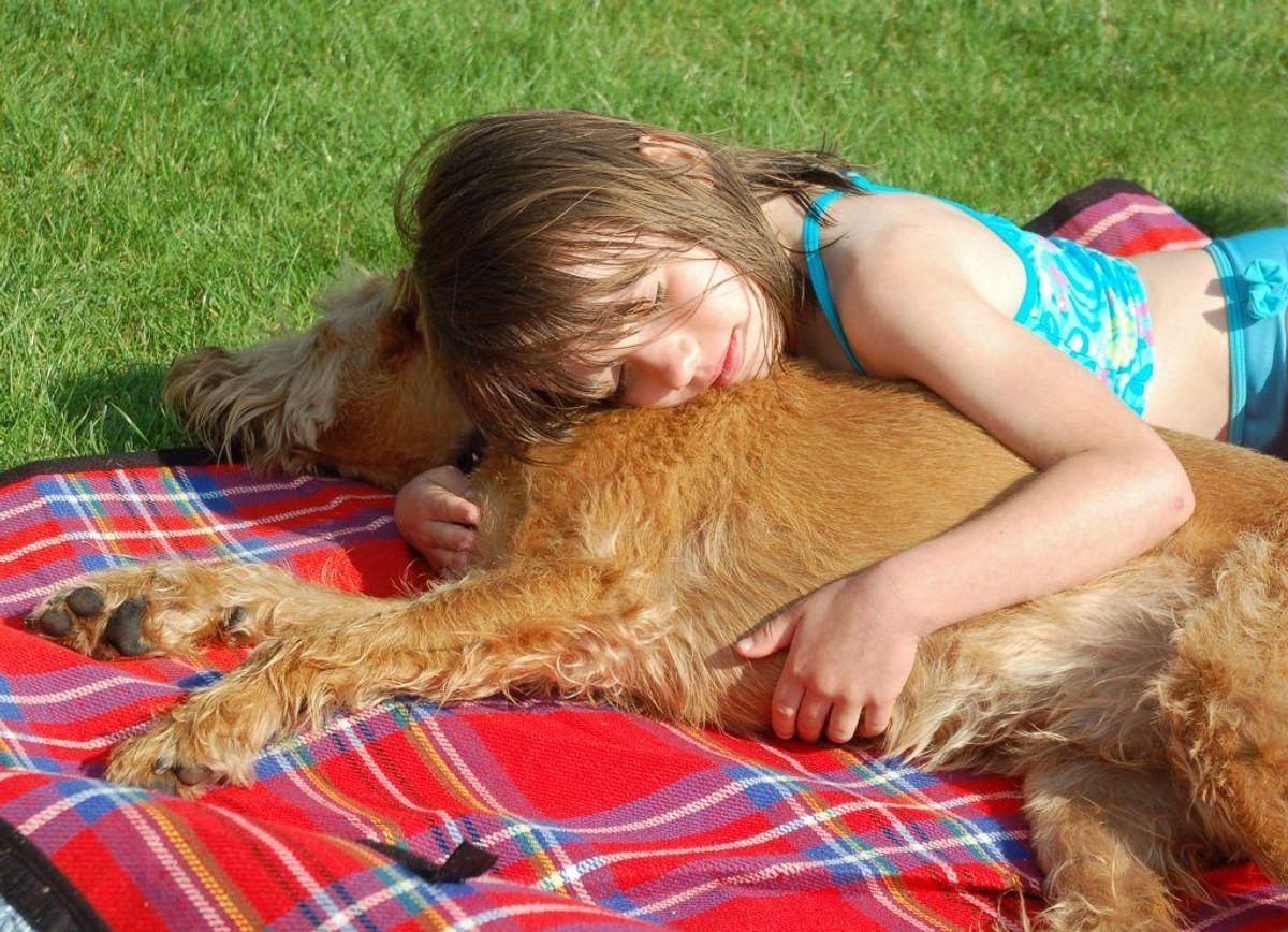 Børn der vokser op med husdyrhold, hund eller kat menes at have et stærkere immunforsvar og lavere risiko for at få eksem.