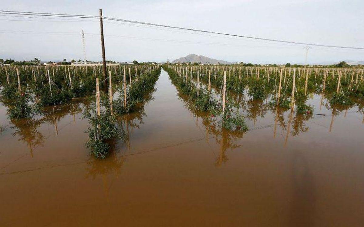 Det voldsomme vejr har kostet flere mennesker livet. Foto: Scanpix.