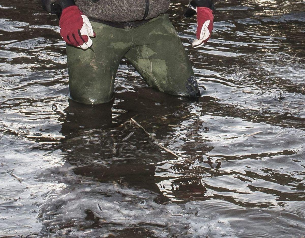 Der kommer til at falde meget vand, og på Bornholm er der aktuelt forvarsel ude om farligt vejr grundet forventet kraftig regn. Foto: Scanpix