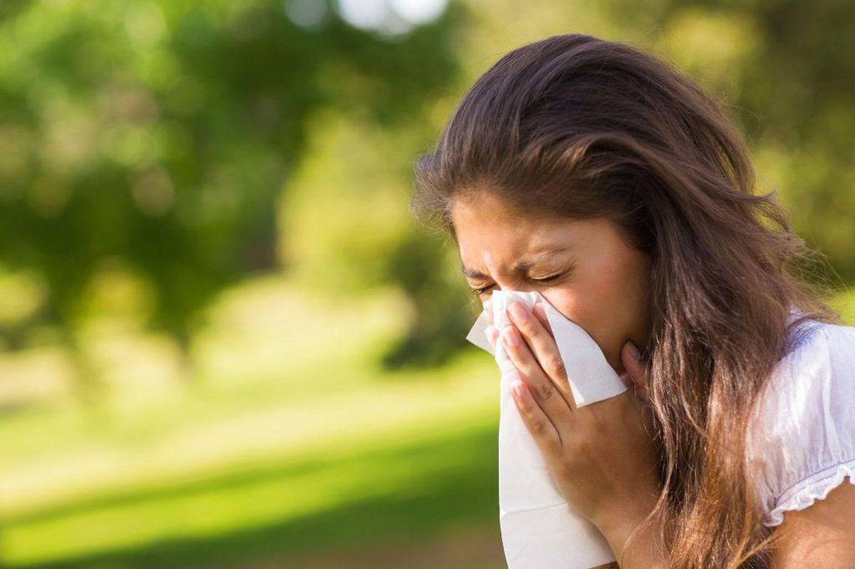 Overfølsomhedssygdomme er et samlet begreb for sygdomme, man lider af, hvis man reagerer på påvirkninger, de fleste ikke gør. Tænk astma, høfeber og anden allergisk snue; eksempelvis fødevareoverfølsomhed. 87% af den danske befolkning er ramt af en eller flere af disse sygdomme. Foto: Scanpix.