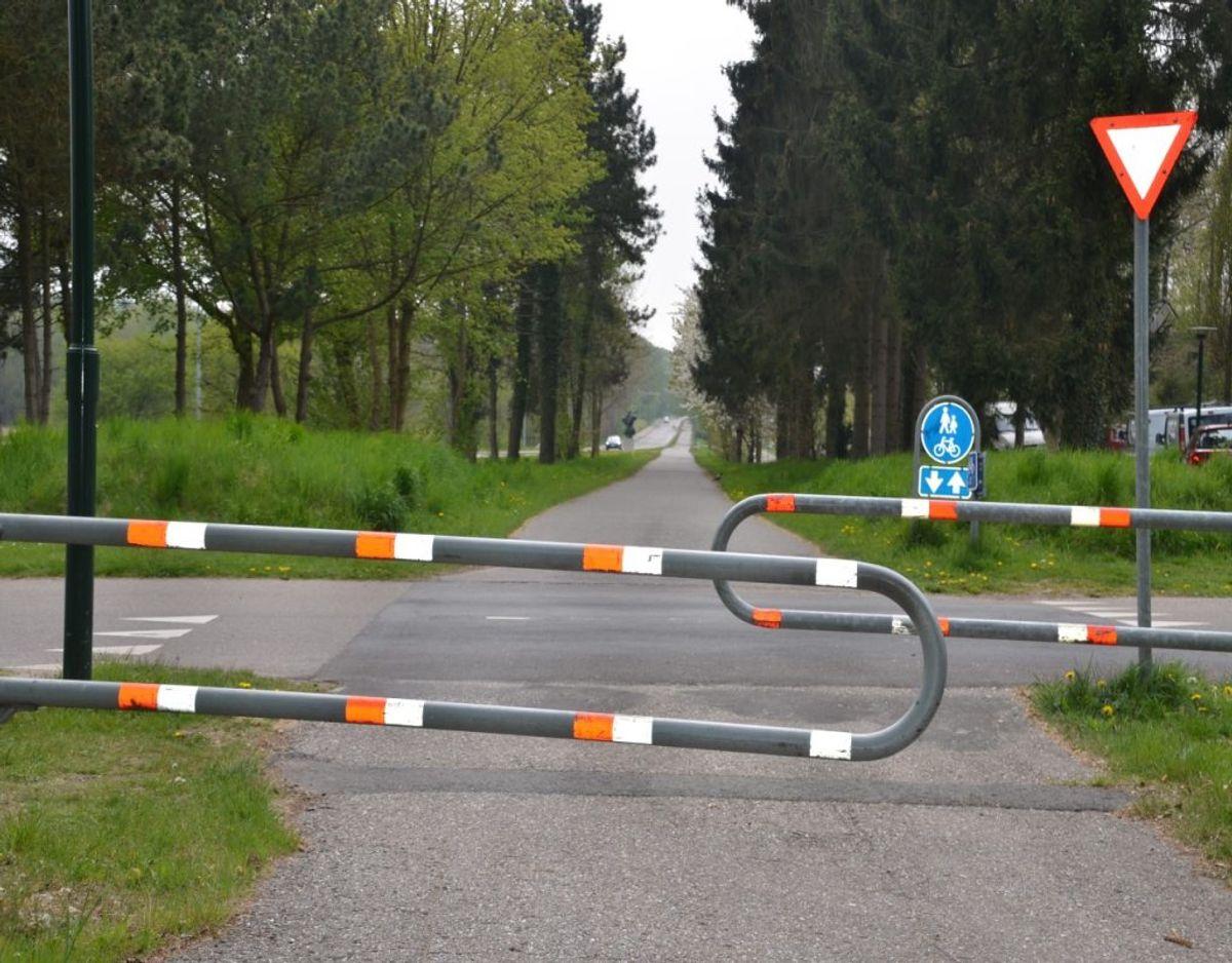 Fælles for de nye køretøjer er det, at de skal færdes på cykelstier. Klik videre for flere regler. Foto: Colourbox