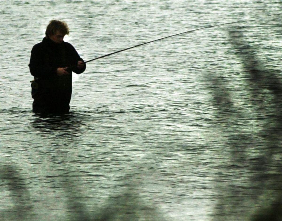 Nordjysk lystfiskerforening har mistet en række effekter, og dem vil de gerne have igen. ARKIVFOTO: Scanpix