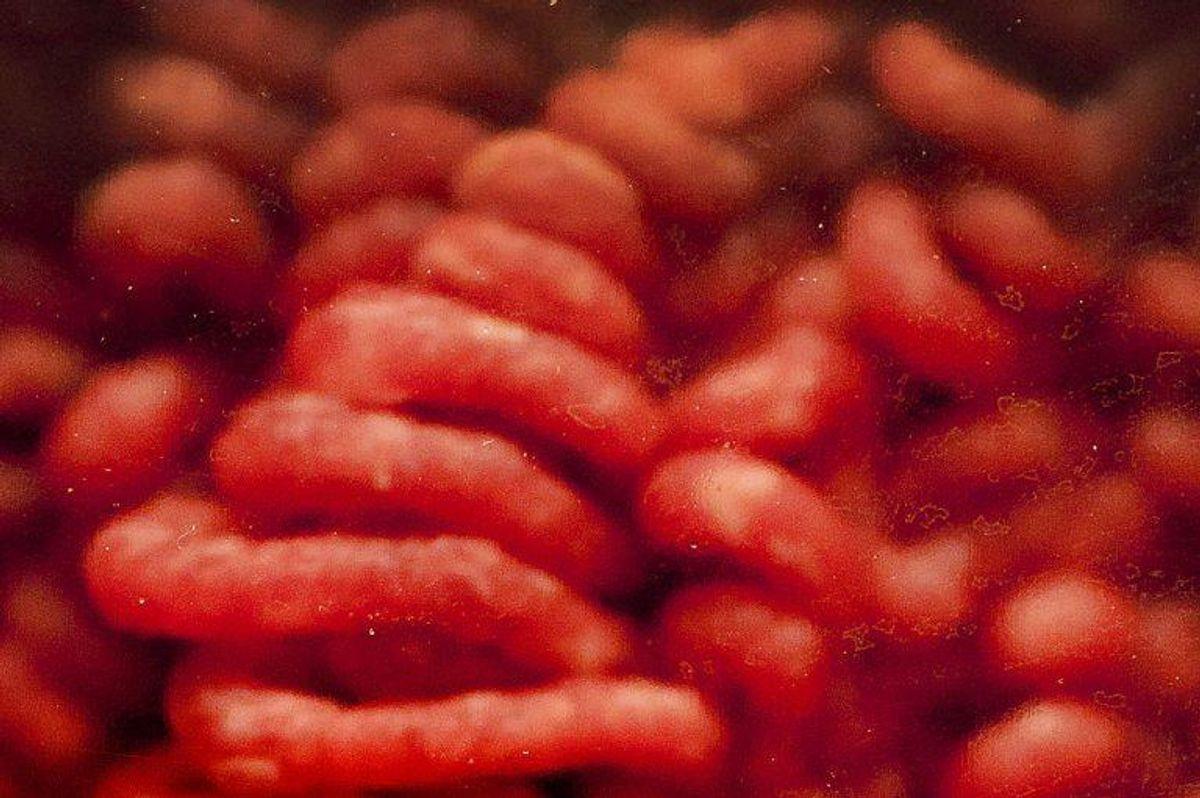 Hakket kød, fjerkræ og mekanisk mørnet kød skal altid gennemsteges (også på grill), da bakterierne her er fordelt rundt i kødet. Foto: Scanpix