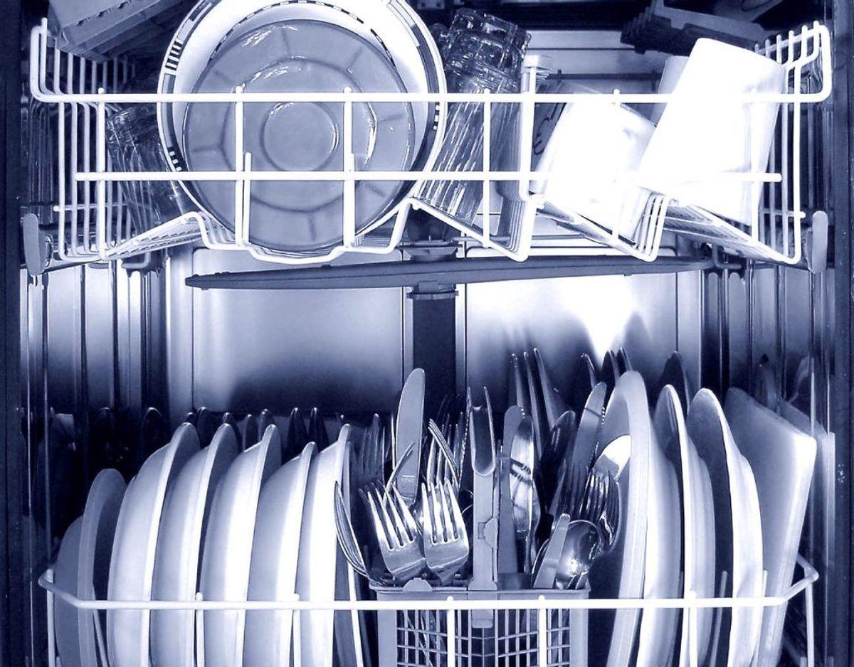 Madvarer kan sætte sig fast i  opvaksemaskinens filter, og begynde at lugte. Så sørg for at få det rengjort jævnligt. Foto: Scanpix.