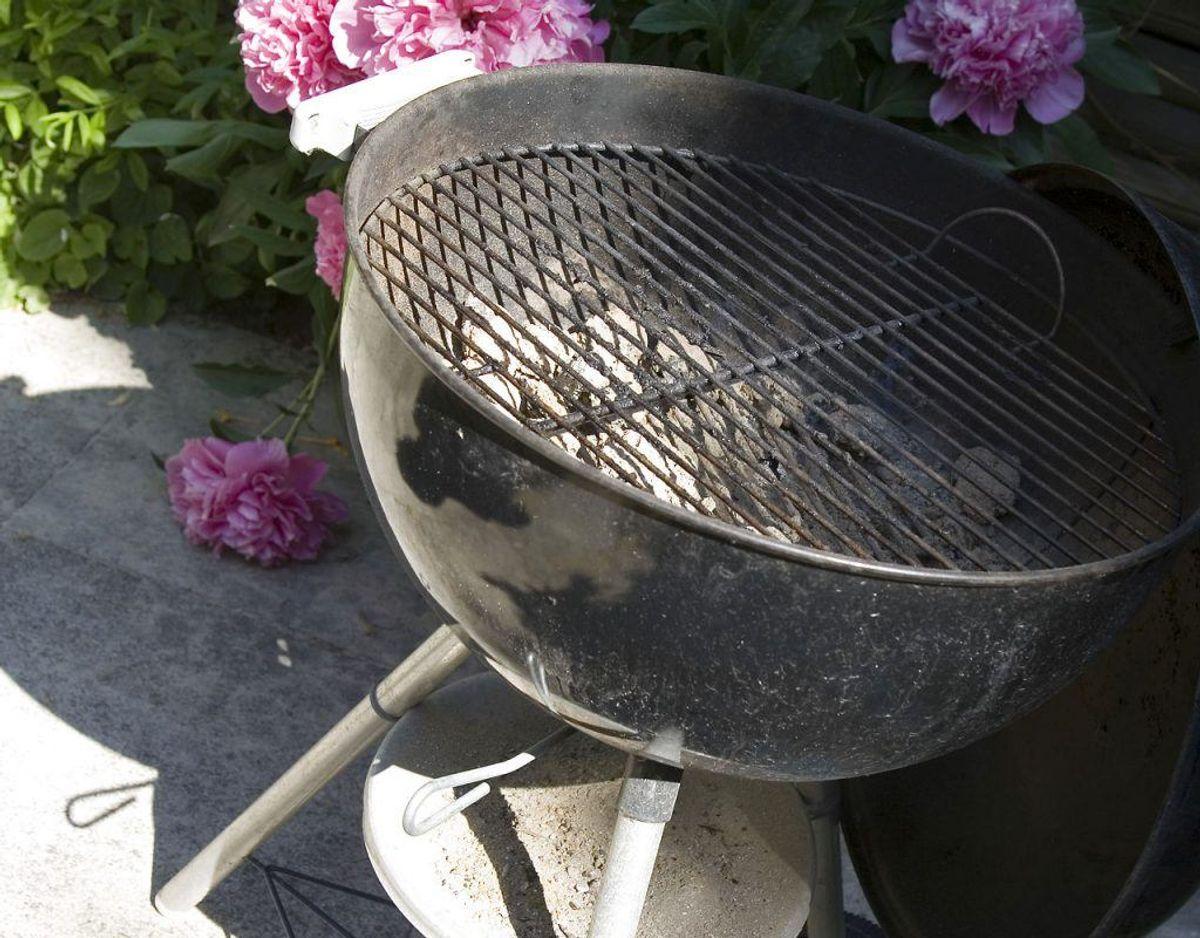 Næste gang du griller, er det en god idé at starte med at give grillristen en tur med stålbørsten, når grillen og risten er blevet varm. Kilde: Bolius Foto: Scanpix