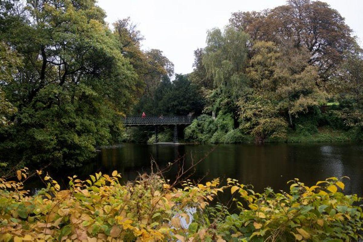 En 23-årig mand er tiltalt for at have begået en voldtægt mod en mand i Ørstedsparken i København (billedet) i september sidste år. Manden er ligeledes tiltalt for at have dræbt sin morfar og en række forhold om trusler og røveri. (Arkivfoto) Foto: Liselotte Sabroe/Scanpix