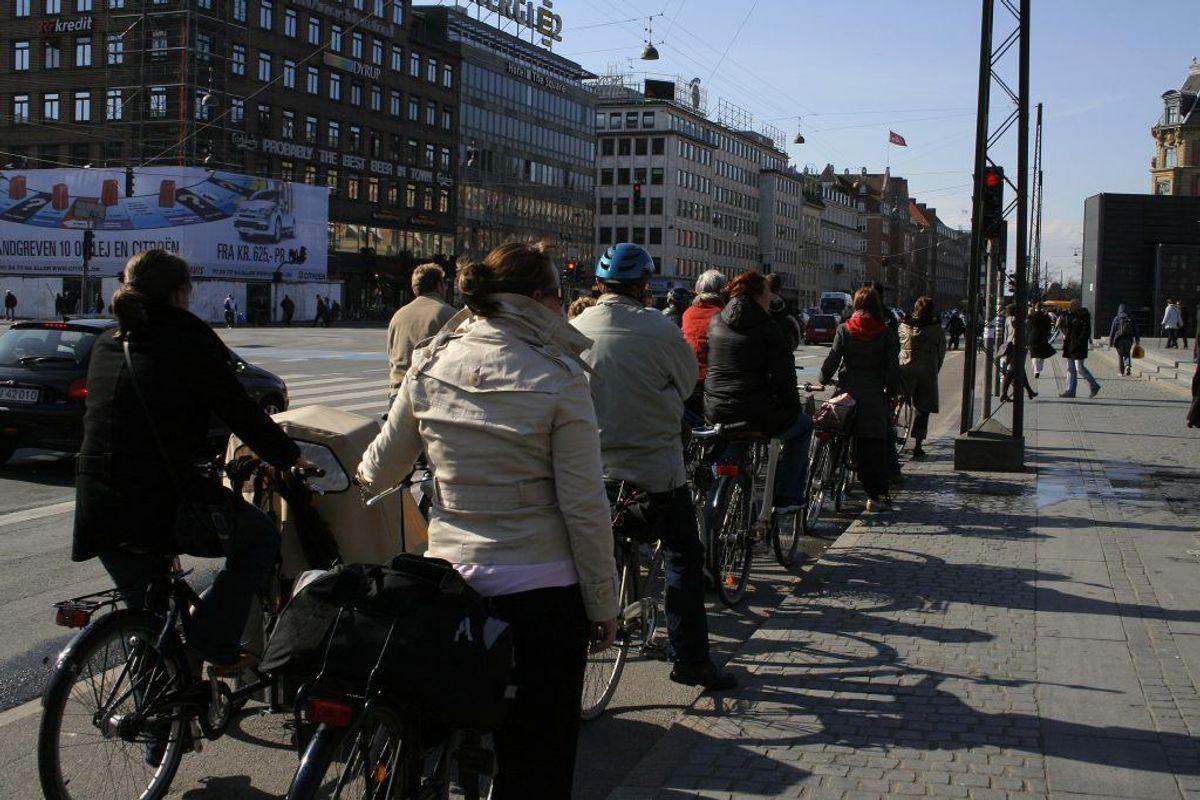 Vær opmærksom på cyklister, når du skal svinge til højre eller venstre. Foto: Scanpix