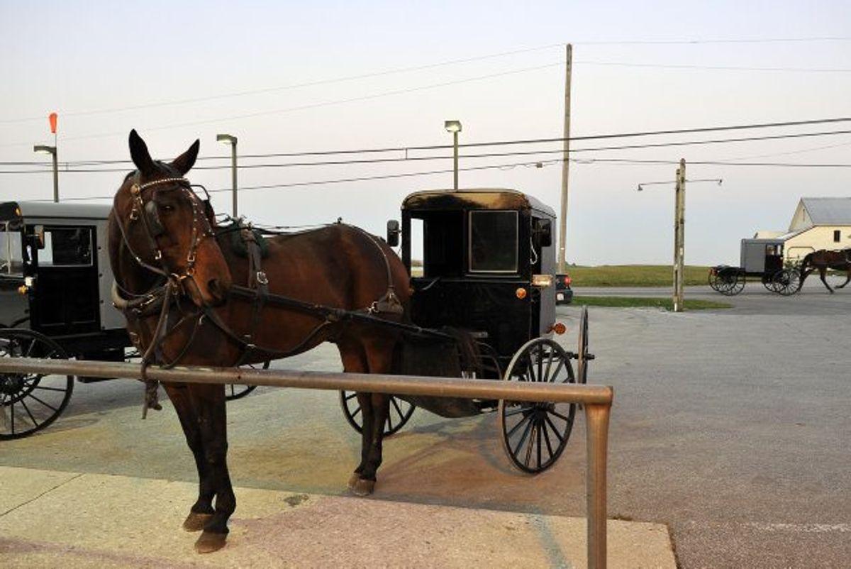 Amish-folkets primære transportmiddel er hestevogne. Her ses en amish-hestevogn i Pennsylvania, USA. (Arkivfoto). Foto: Mladen Antonov/AFP