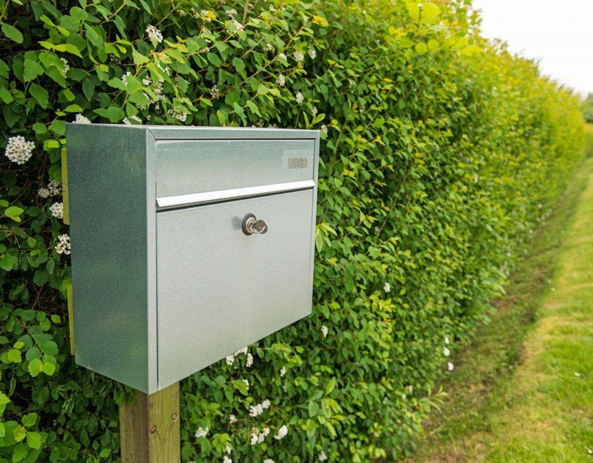 Kommunale lokalplaner eller bestemmelser i for eksempel din grundejerforening kan indeholde andre og flere regler for din hæk. Du kan finde reglerne hos teknisk forvaltning i din kommune, på tinglysningskontoret eller hos din grundejerforening. Kilde: Forbrugerrådet Tænk. Foto: Colourbox.
