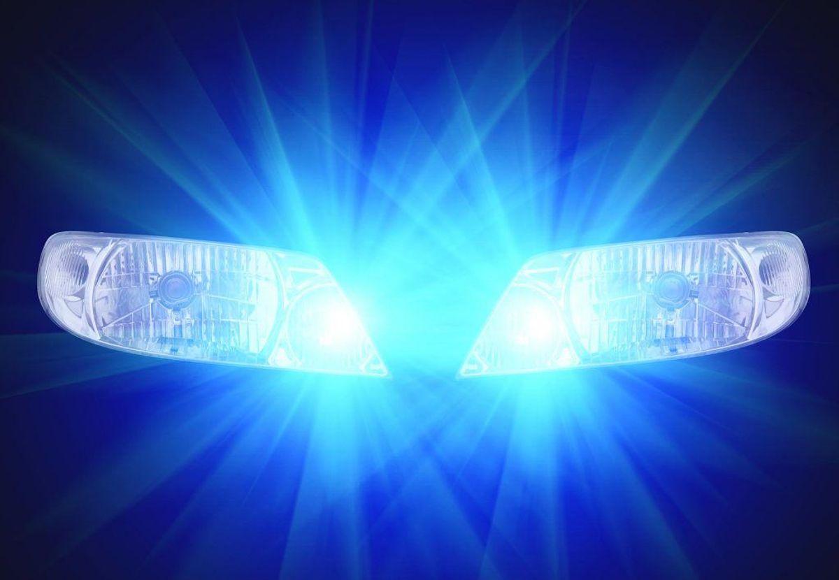 Hold fokus lidt længere fremme i lyskeglerne, da reflekserne fra dyrenes øjne ses bedst i udkanten af bilens lyskegler. Kan du se dyr, så sæt farten ned. Foto: Colourbox.