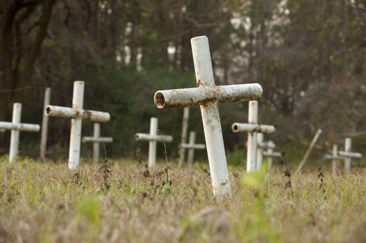 Der er tidligere fundet over 50 lig ved skolen. KLIK FOR FLERE BILLEDER. (Foto: Scanpix)