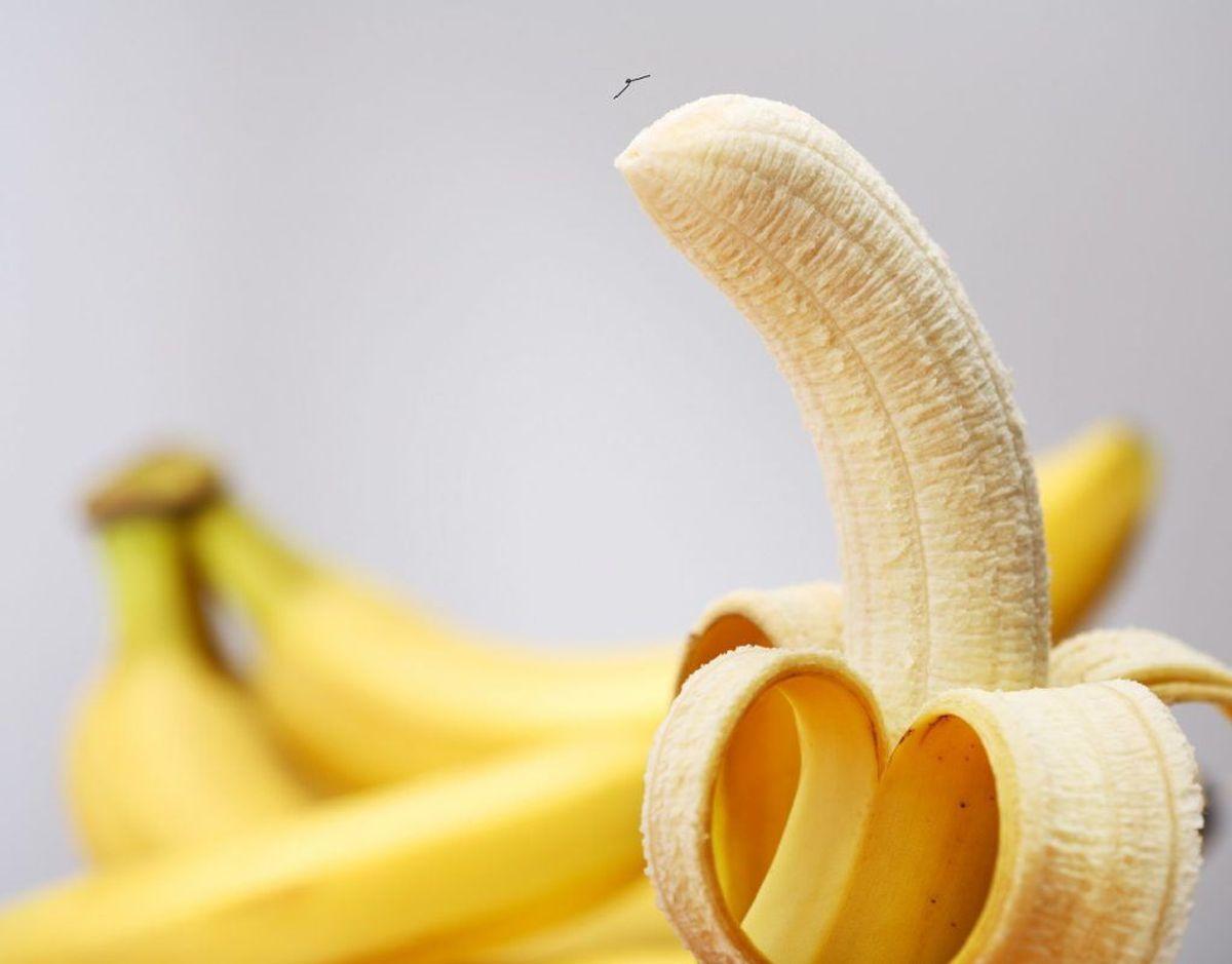 Banan indeholder stoffer, der kan neutralisere syren i maven. Foto: Colourbox. Kilde: Samvirke.