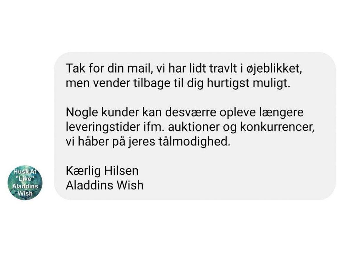 Anne-Mette Sørensen får et standardiseret autosvar på Facebook, når hun forsøger at kontakte Aladdins Wish. Foto: Screenshot