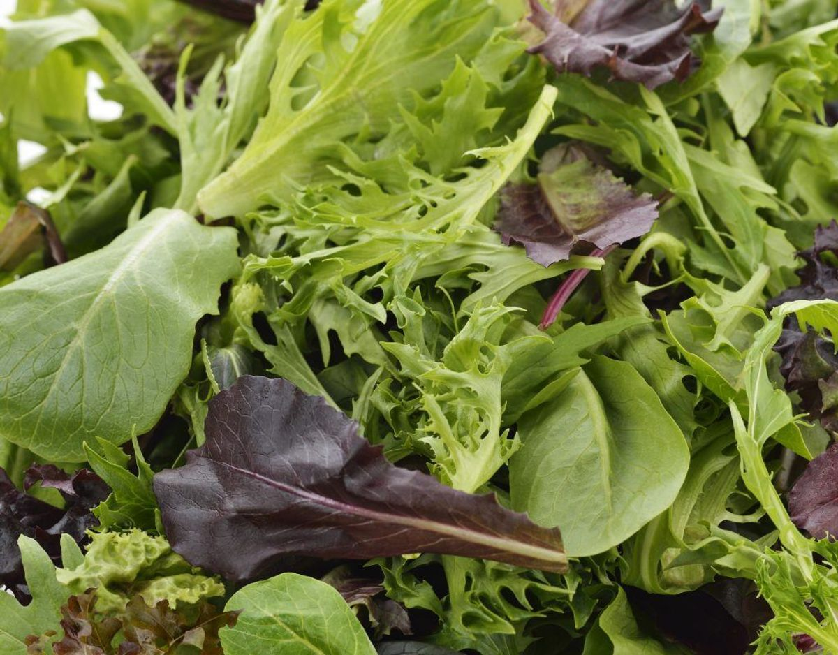 Spis masser af frugt og grønt eksempelvis i form af salater til maden. Grønt tilbehør er ofte er mindre salt og bidrager med vigtige næringsstoffer. Genrefoto.