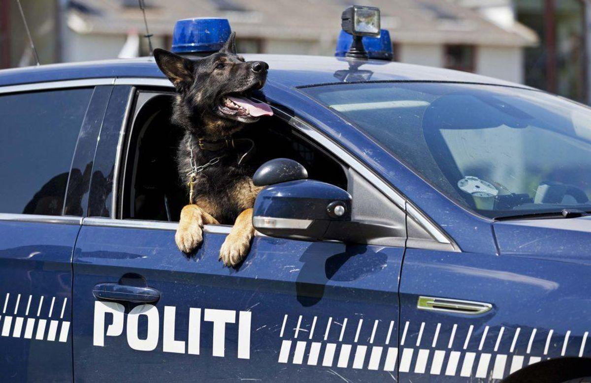 HVis du er blevet udsat for ufravigelig kriminalitet, skal du kontakte politiet. Foto: Scanpix.