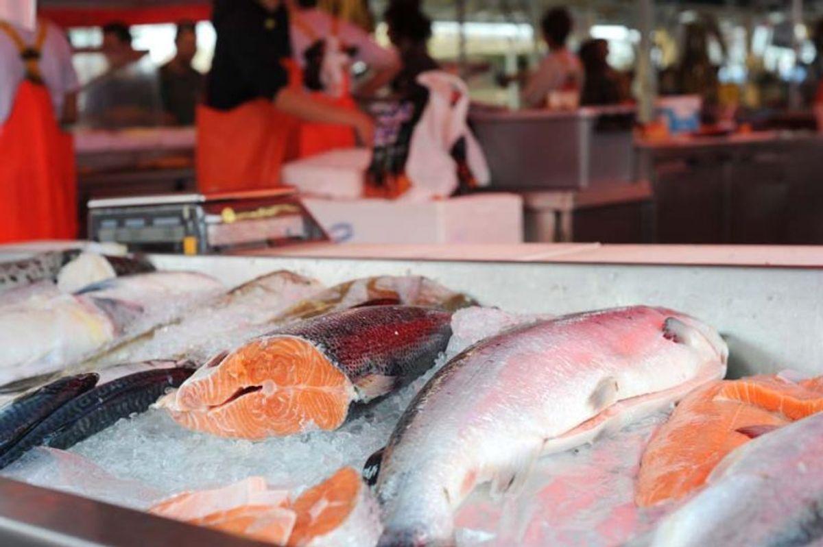Rensede ferske fisk, tilberedte eller forarbejdede fiskevarer. Højst 20 kilo eller en fisk per person. Også her er der betingelser, der  skal være opfyldt. Se mere på Fødevarestyrelsens hjemmesid. Foto: Colourbox.