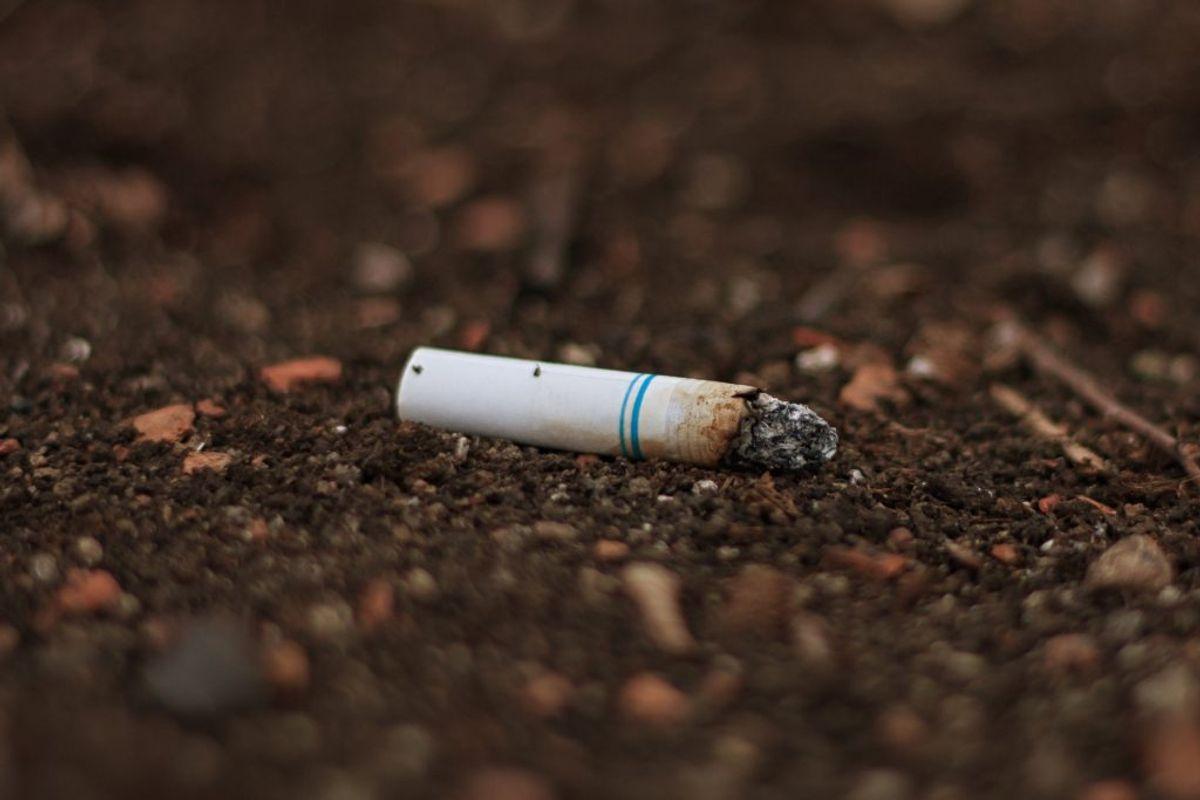….. og nej. Du må heller ikke smide dine cigaretskodder i toilettet. Foto: Scanpix