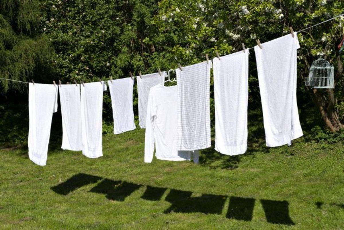 Vil du gerne spare penge på tøjvask? Klik igennem galleriet for at se, hvor meget vand forskellige vaskemaskiner bruger. Foto: Jens Nørgaard Larsen/Scanpix