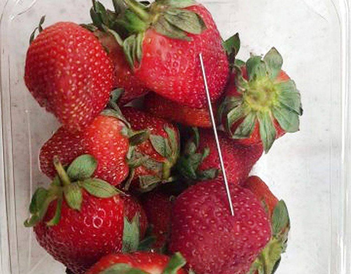 Det er nåle som denne,d er er sat i jordbærrene.