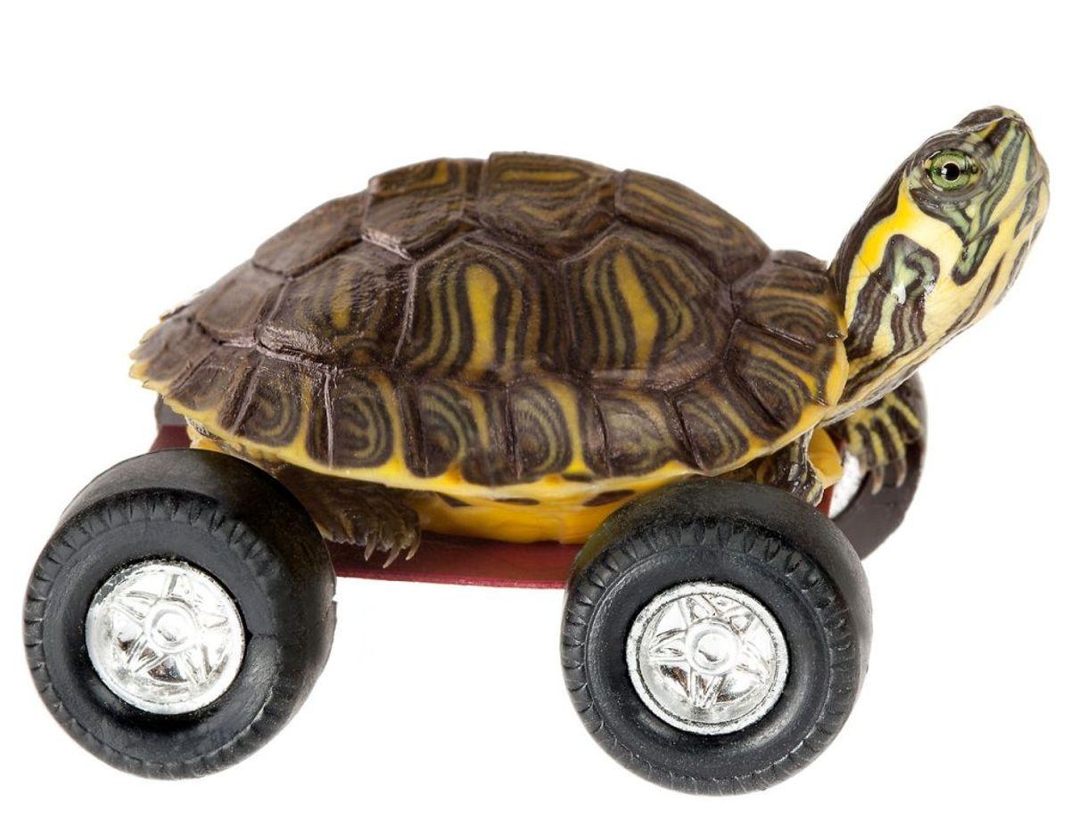 Du ved sikkert, at du ikke må køre for stærkt. Men vidste du, at du heller ikke må køre overdrevent langsomt? Forstyrrer du dine medtrafikanter, bryder du loven. Foto: Scanpix.