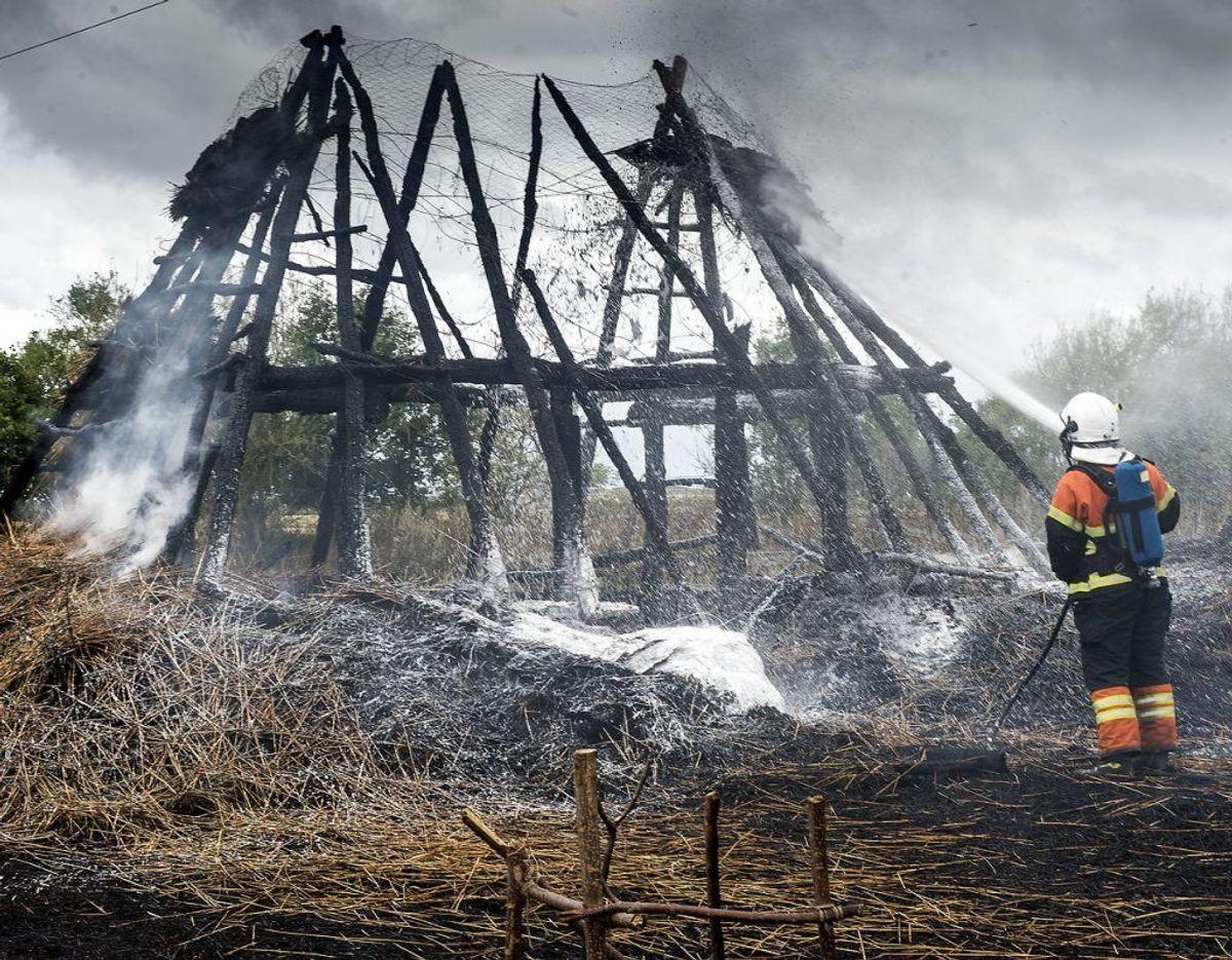 Branden gik voldsomt ud over et rekonstrueret jernalderhos. Foto: Hans Chr. Gabelgaard/Ritzau Scanpix. KLIK FOR FLERE BILLEDER