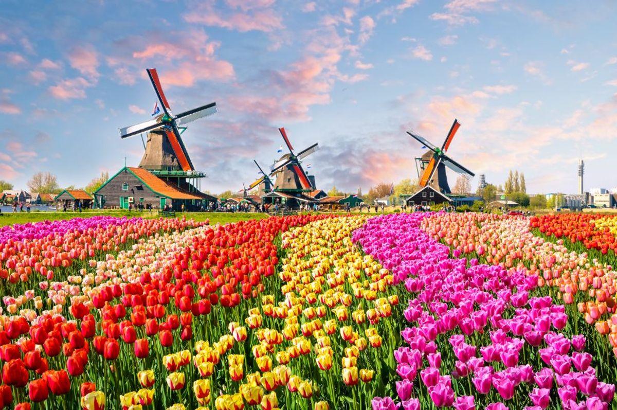 Holland har listens dyreste benzin. Her må man slippe 12,36 kroner for en liter 95 oktan, og 10,73 kroner for en liter diesel. (Foto: Iris)