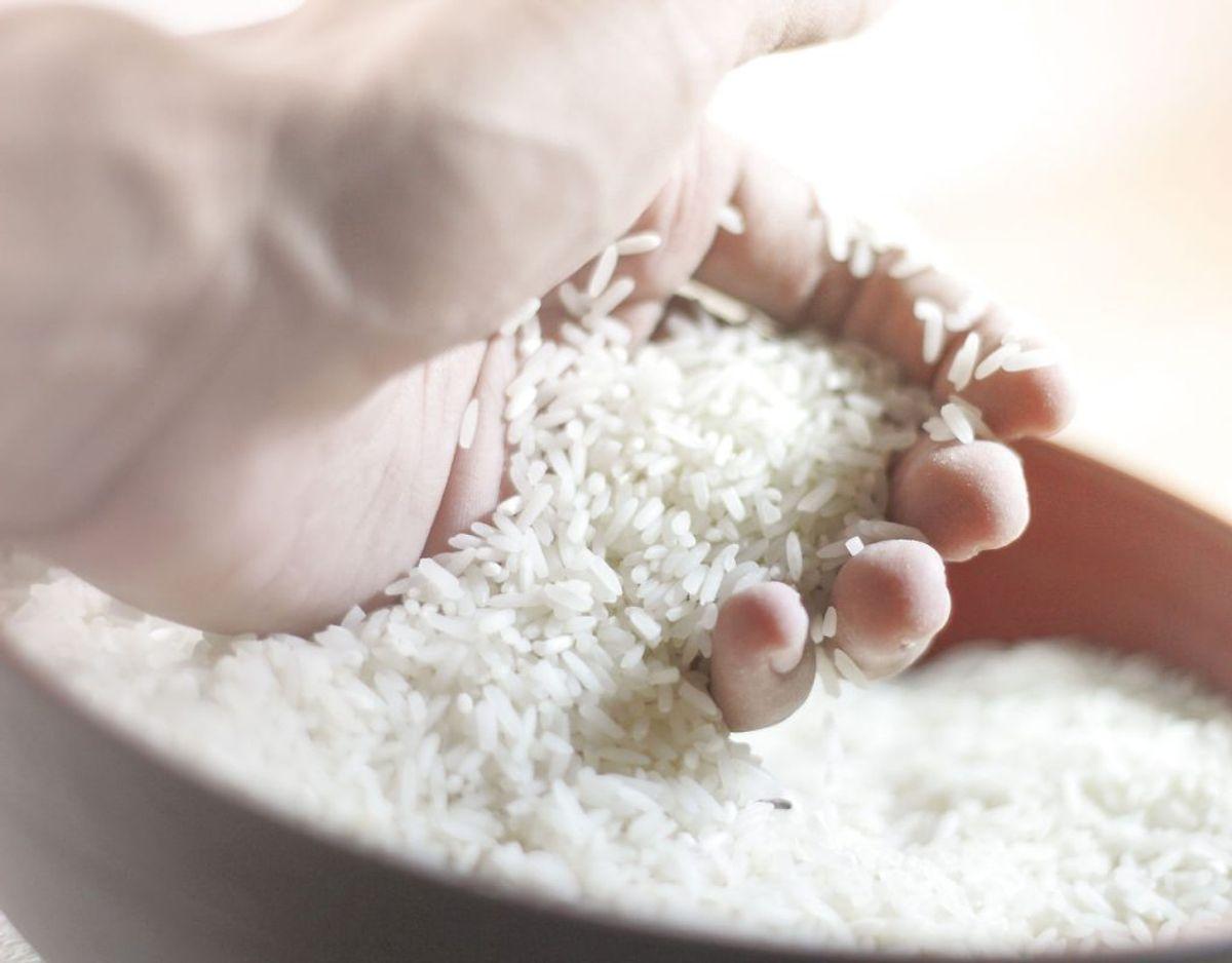 Ris har en tendens til at smuldre og blive grødet, hvis det har været i fryseren. Foto: Scanpix