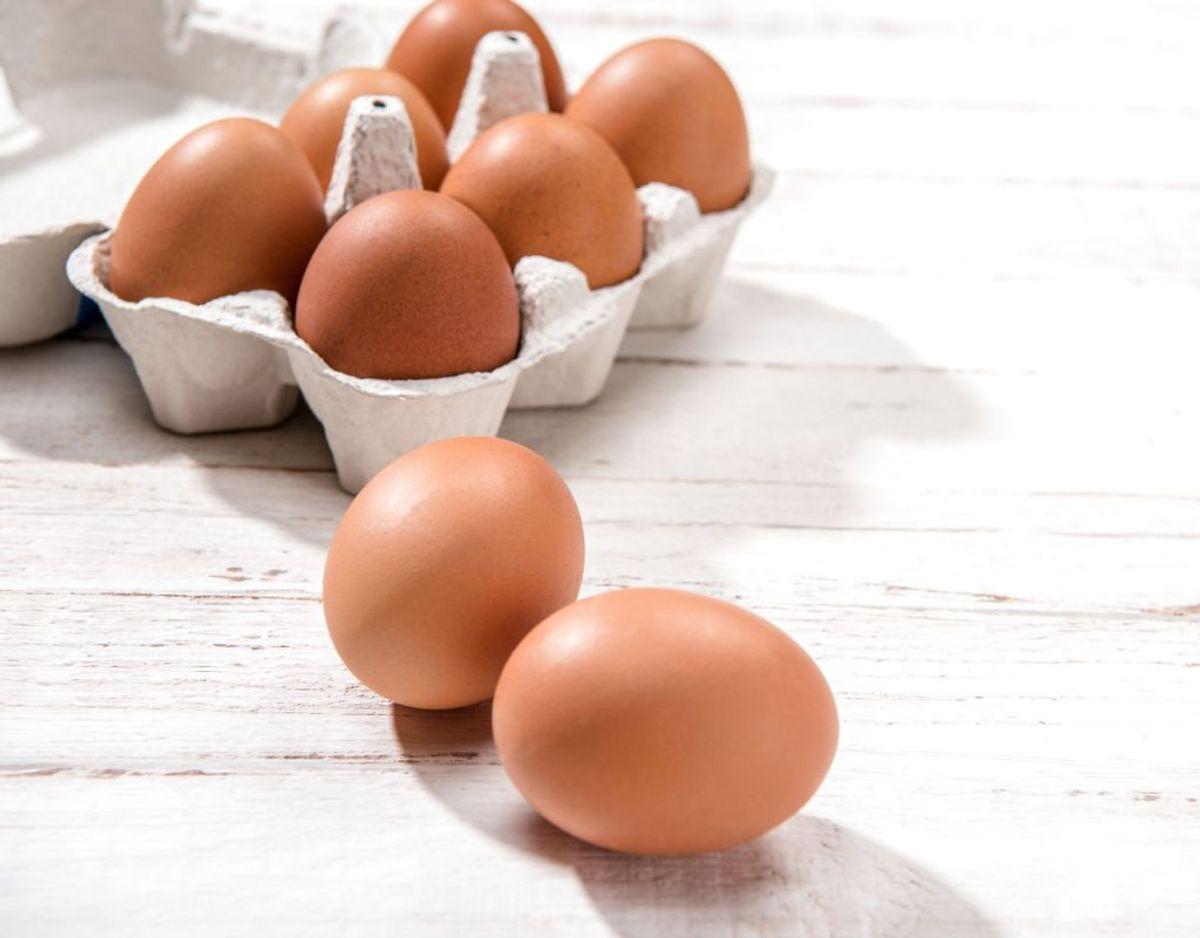 Æg skal heller ikke fryses – af flere årsager. Blandt andet fordi væske udhvider sig, og så kan der gå hul på skallen. Men selve æggehvide- og blomme bliver også dårligt at frost – det samme gør mad med æg i, hvis du fryser disse. Foto: Scanpix