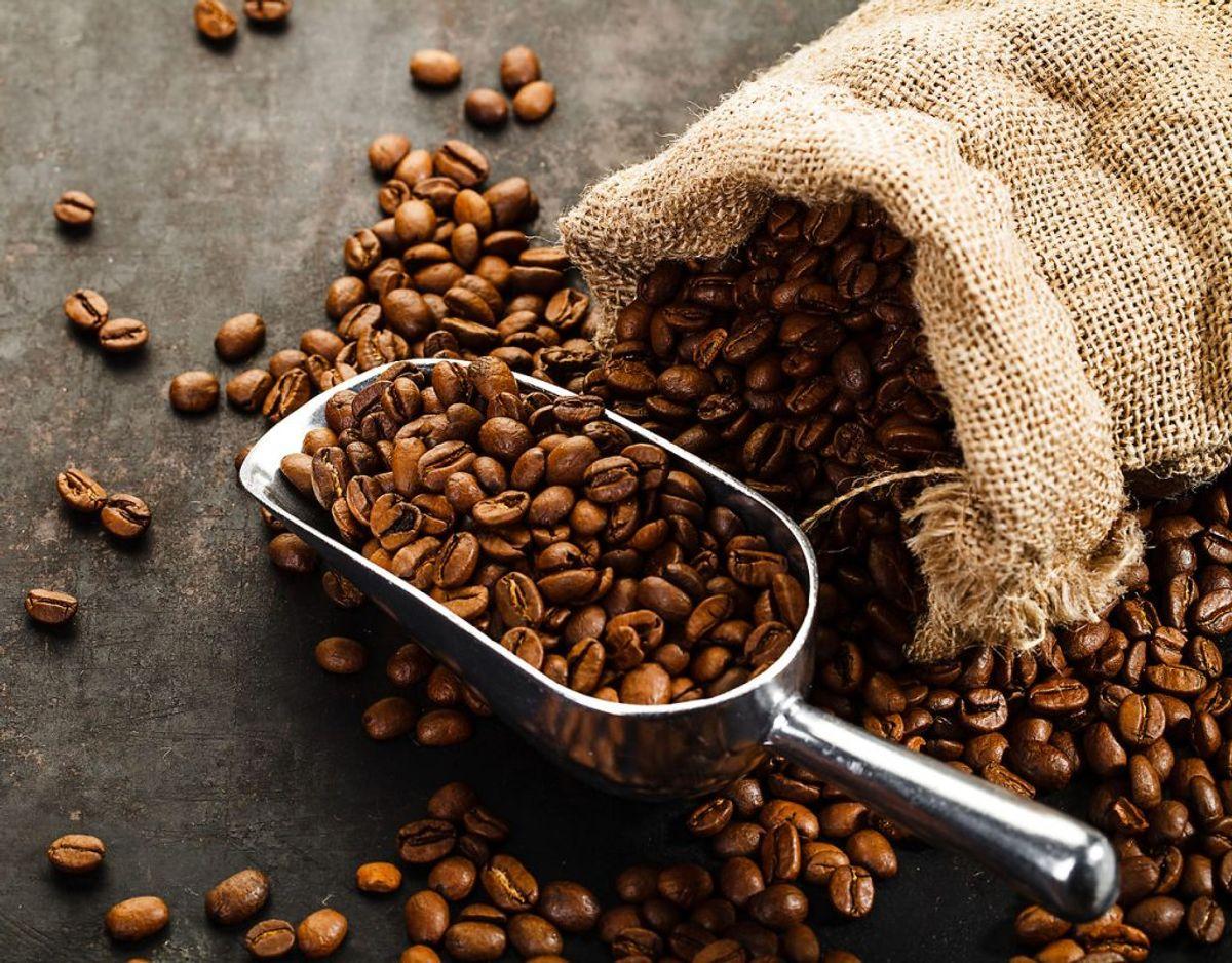 Kaffe – i malet form eller som bønner – har intet at gøre i køleskabet. Kaffen absorberer lugt og smag fra andre madvarer. Foto: Scanpix