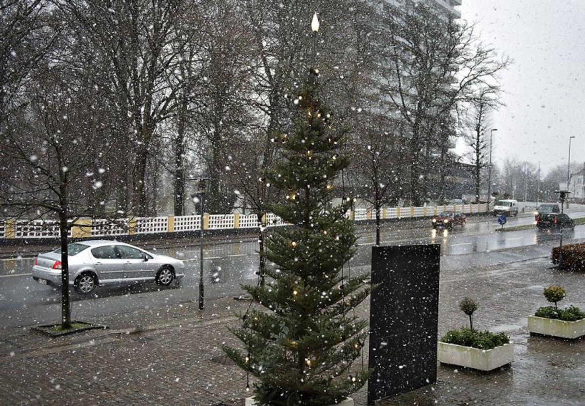 """Tøsne: """"Faldende sne, som er våd på grund af begyndende smeltning (Bør ikke forveksles med slud, som er en blanding af regn og sne). Foto: Scanpix"""