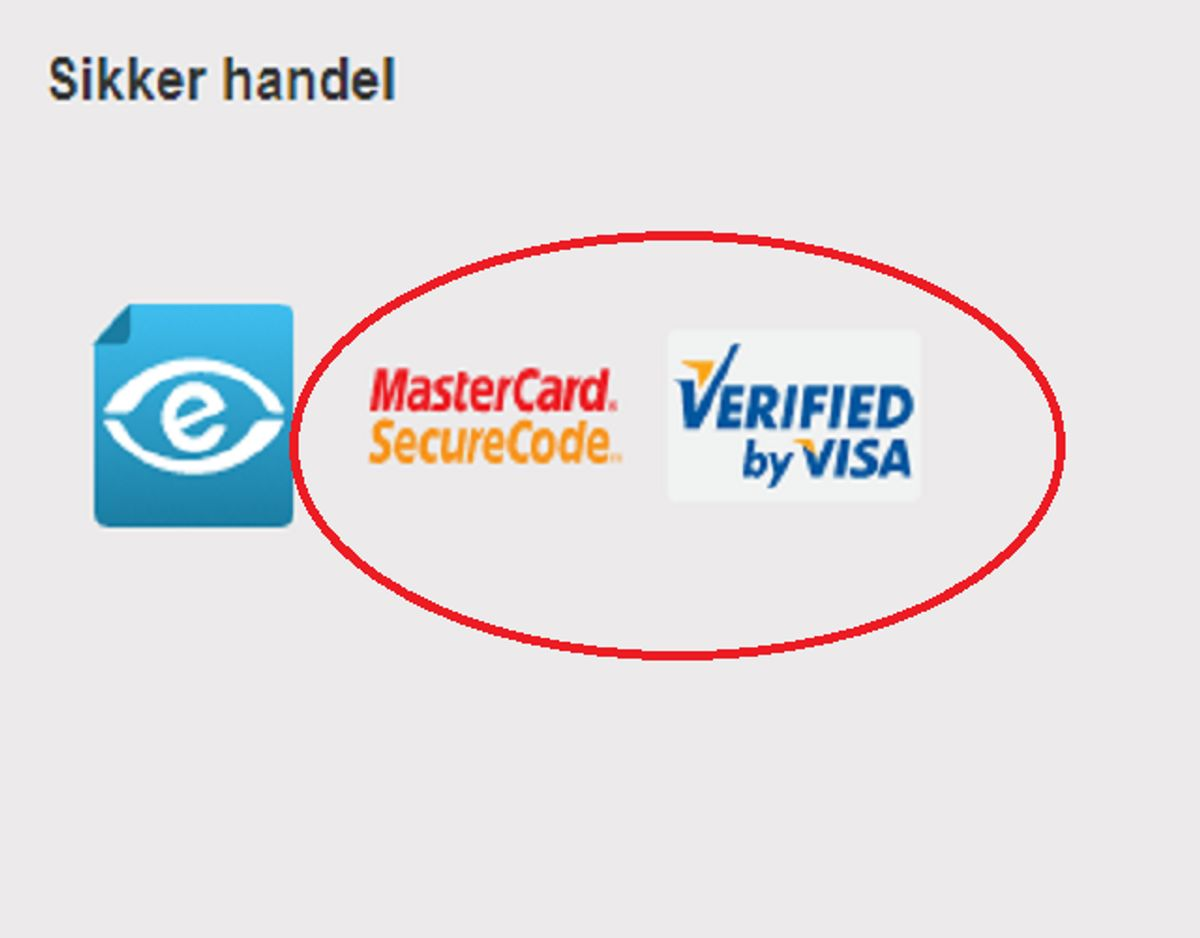 Undersøg om forbindelsen er sikker, før du betaler – det vil sige at netbutikken skal benytte SecureCode/Verifired by Visa, og at hjemmesiden skal have en HTTPS-forbindelse. Foto: Screenshot.
