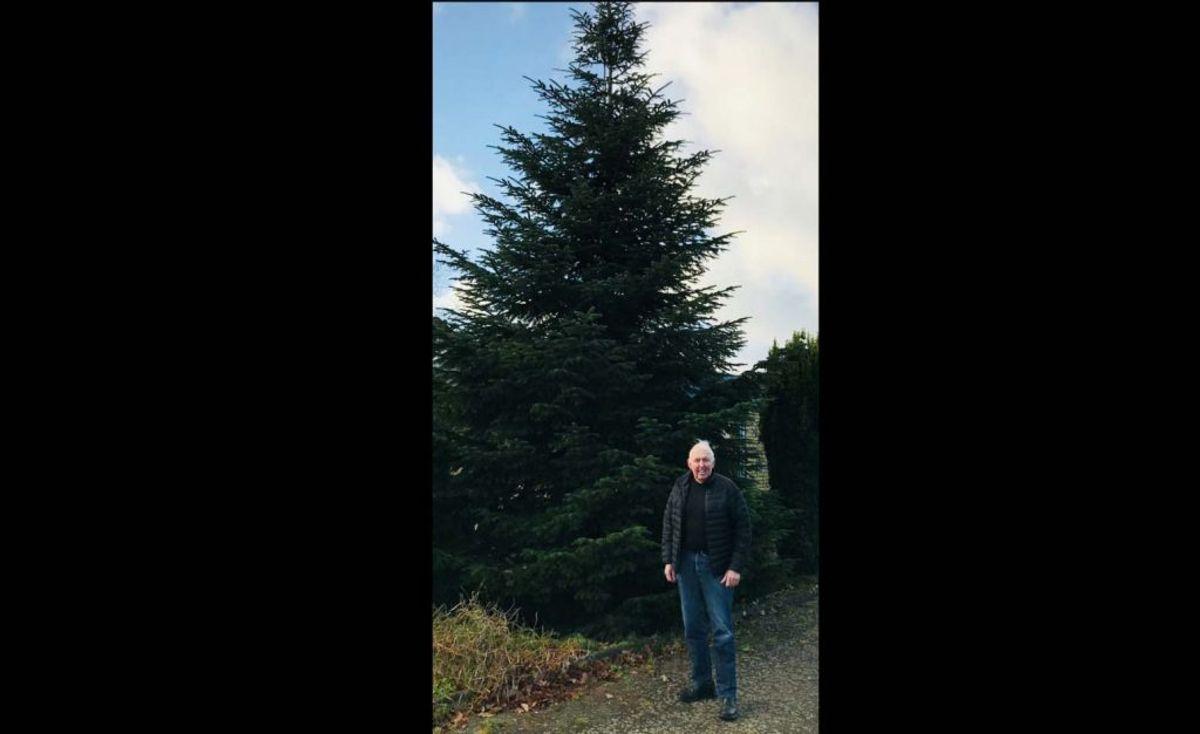 Erhardt Møller har skænket juletræet, som kommer til at skabe julestemning på Banegårdspladsen i Kolding frem til jul. Pressefoto.